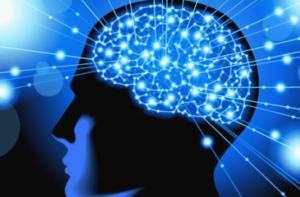 뇌경색 종류