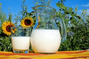 우유-요오드 관련 식품