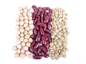 콩-bean